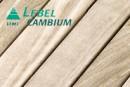 Thumbnail_nouvelle_lebel
